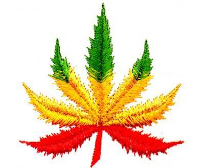 Cannabis Et Rasta Page 3
